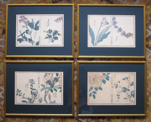 framed Japanese botanical prints