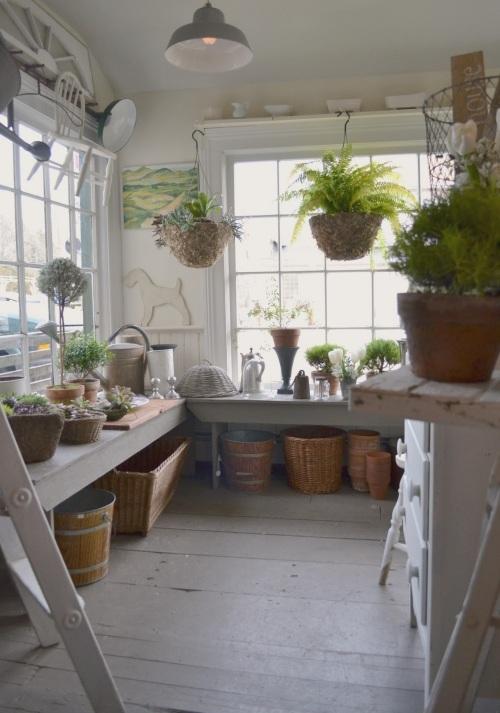 White flower farmhouse mightylinksfo