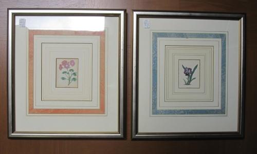 Maund Prints
