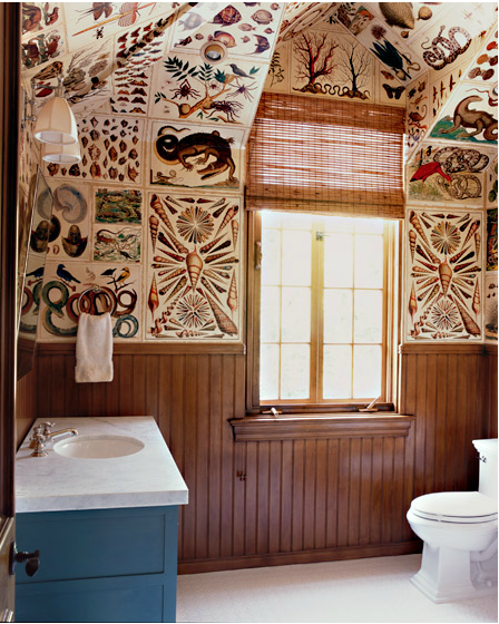 Katie Leede World Travelers Abode curiosities bathroom
